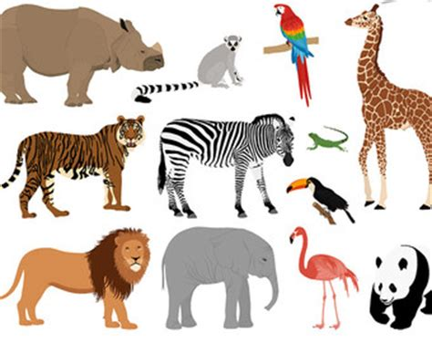 My trip to the zoo essay